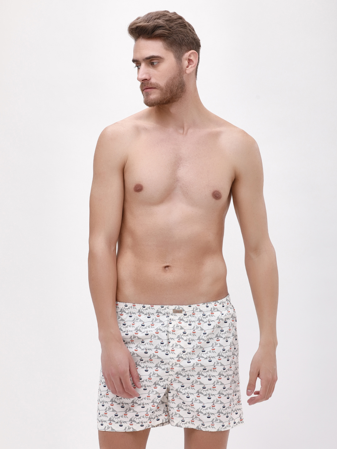 Flying Machine Grey Cable Car Printed Boxers 1