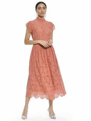 Rare London High Neck Lace Midi Dress