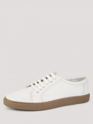 TREAD Lace Up Plimsolls...